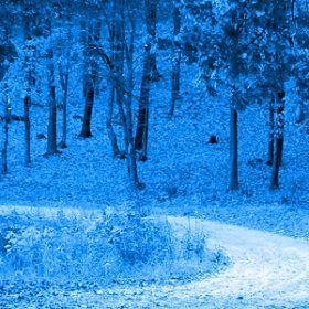 Otoño #blue #cdtrailrunnrstore