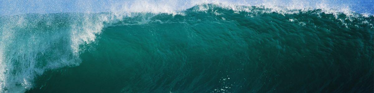 blue wave #cdtrailrunnerstore